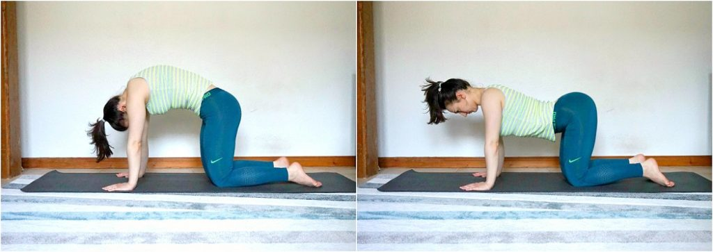 Girl performing the Cat-Camel Back Stretch.