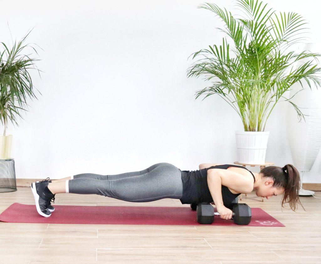 dumbbell push up exercise