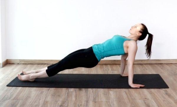reverse plank bodyweight exercise demo.